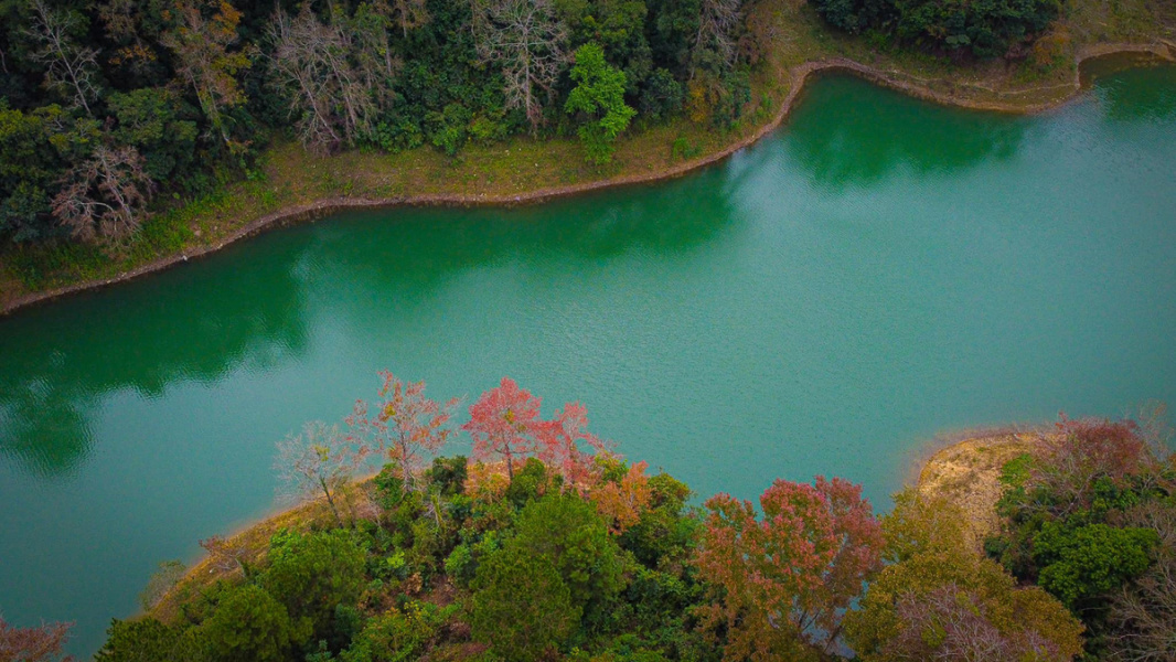 Maple tree colors transform landscape in northern Vietnam district - VnExpress International
