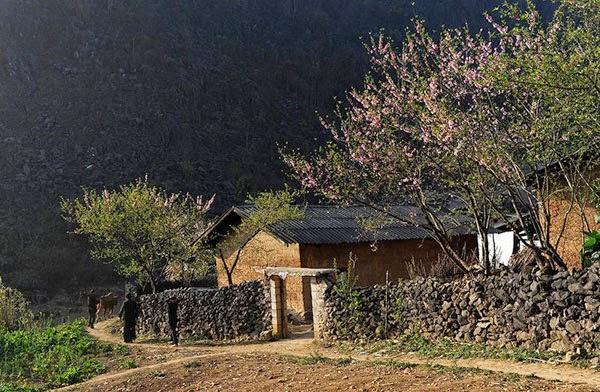 Dong Van Trekking Tour - Vision Travel