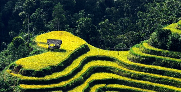 The farmers make themselves as the artists when creating a heart on the mountains
