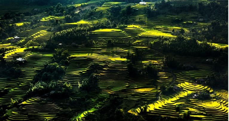 Hoang Su Phi Trekking Tour - Vision Travel